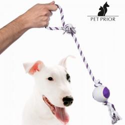 Cuerda con Pelota para Perros